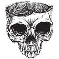 Skull drawing vector for use Royalty Free Stock Photography