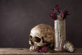 Skull with dry rose in ceramic vase Royalty Free Stock Photo