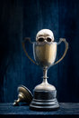 Skull emerge from trophy trophy still life photography old against the dim emotion Stock Photos