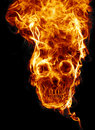 Skull of fire Royalty Free Stock Photo
