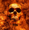 Skull Fire Horror Royalty Free Stock Image