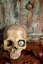 Skull with glass eye Royalty Free Stock Photo