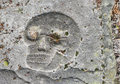 Skull on a gravestone in graveyard in usquert in the province of groningen Royalty Free Stock Photo