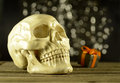 Skull with halloween gift human on black shining background Royalty Free Stock Photo