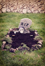 Skull with hands reaching from the grave decoration in a garden for halloween Royalty Free Stock Photography