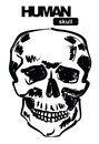 Skull icon Royalty Free Stock Photography