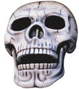 Skull - isolated Royalty Free Stock Image