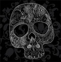 Skull lace Royalty Free Stock Photo