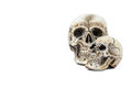 Skull model isolated on white background clipping path in picture Stock Images