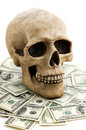 Skull with money Royalty Free Stock Photos