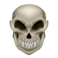 Skull of a mutant with fangs illustration on white background Stock Images