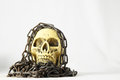 Skull and old chains on a white background Royalty Free Stock Photo