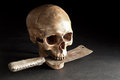 Skull with old knife still life photography human in the mouth Stock Photos