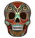 Skull ornament (colored) Royalty Free Stock Images