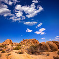 Skull rock in joshua tree national park mohave california desert yucca valley usa Royalty Free Stock Photos