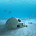Skull on sandy ocean bottom with small fish cleaning some bones d render slight differential focus Stock Image
