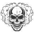 Skull in the smoke Royalty Free Stock Photo