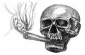 Skull smoking sketch on paper Royalty Free Stock Photo