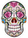Skull sugar skull colorful and traditional mexican Stock Photography