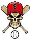 Skull wear a baseball hat