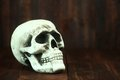 Skull on wood grunge rustick background spooky halloween Royalty Free Stock Images