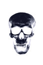Skull xray on white background Royalty Free Stock Photos