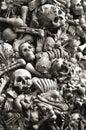 Cráneo y