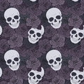 Skulls and dark roses Royalty Free Stock Photo