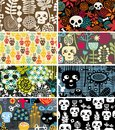 Skulls and flowers cards vector illustration Stock Image