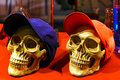 Skulls pair of decorated with fashion caps Stock Photos