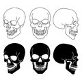 Skulls set vector illustration Stock Photo
