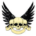 Skulls with wings Royalty Free Stock Photo