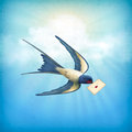 Sky bird letter mail free flying swallow with on a blue nature background with white clouds subtle grunge texture sun rays Royalty Free Stock Photography