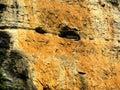 Image : Sky coffins Lesser Three Gorges holding  brass