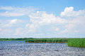 Sky with fluffy clouds above a lake blue the reeds Stock Image