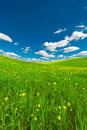Sky and meadow farmhouse green sloping meadows of tuscany Royalty Free Stock Photos