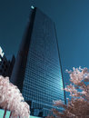 Skyscraper Infrared Royalty Free Stock Image
