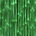 Sl bamboo thin green Royalty Free Stock Photo
