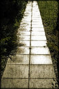 Slab path in a garden vintage look Royalty Free Stock Photo