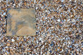 Slab and shingle paving set amongst a bed of Royalty Free Stock Images