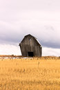 Slanted Barn Royalty Free Stock Photo