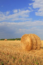 Slanted straw hay collected in a roll in the field Stock Photography