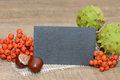 Slate autumn fruits with on wood Royalty Free Stock Photography