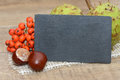 Slate autumn fruits with on wood Stock Image