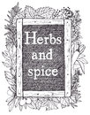 Slate and herbs hand drawing sketch Royalty Free Stock Image
