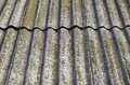 Slate roof is covered with green moss Stock Image