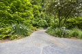 Slate stone garden path with plants walkway oregon irises trees and shrubs Royalty Free Stock Photos