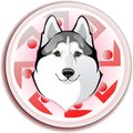 Slavic wolf image of a dog breed siberian husky against pattern sun symbol Stock Image