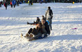 Sled riding in Central Park after snow storm Nemo Royalty Free Stock Photos