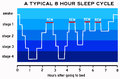 Sleep cycle Royalty Free Stock Photo